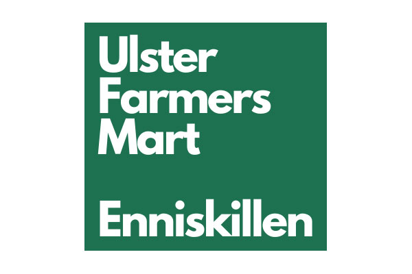 UFM Enniskillen goes live with Newline ASP's live sale internet bidding