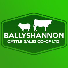 Newline Auction Software goes live at the mart in Ballyshannon, Co.Donegal